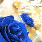 北川景子披露宴、青いバラのドレスにコピーライターは何を思ったか。