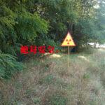 放射能は安全か。福島で検索して原発がまったく表示されない不自然さ。